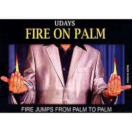 Fire on Palm - India