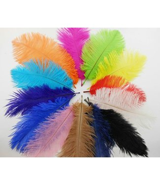 Feather Plume Red by SA Feathers