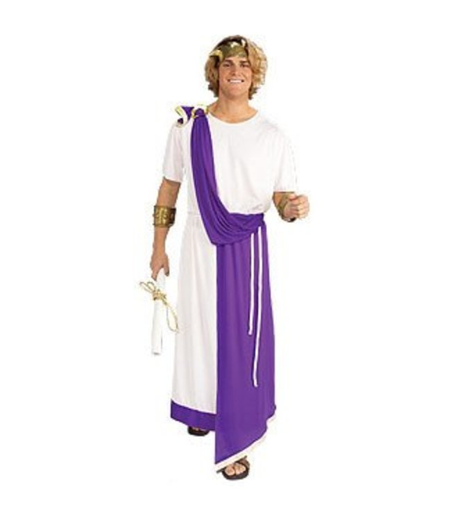 Forum Novelties Toga Julius Caesar, Purple Drape- Adult 42