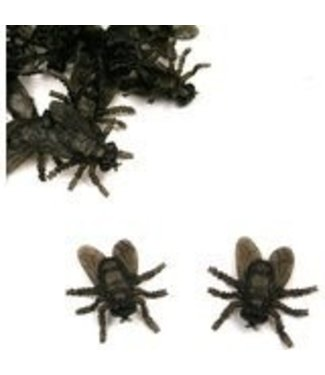 Black Flies - 70 pcs.