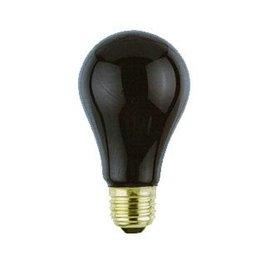 Black Light Bulb by Loftus International