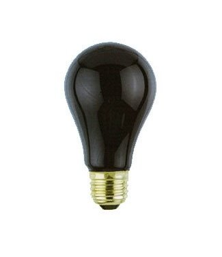Black Light Bulb by Loftus International