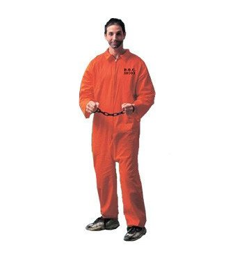 Forum Novelties Jailbird Adult Standard