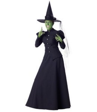 InCharacter SUPER SALE Wicked Witch Adult Extra Large Costume by InCharacter