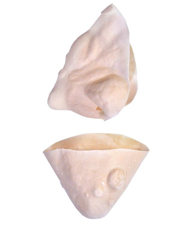 Morris Costumes and Lacey Fashions Witch Nose And Chin Kit by Morris Costumes