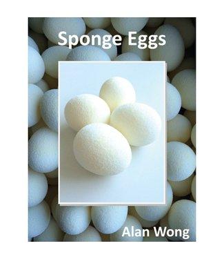 Sponge Eggs, 4 Pack by Alan Wong