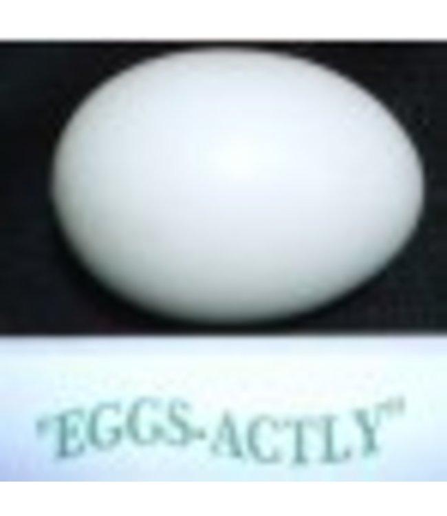 Eggsactly Egg - Extra Large w/Hole and Tirofog, Inc. M5