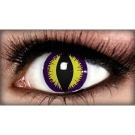 Fine And Clear Purple Kitty Contact Lenses (C2)