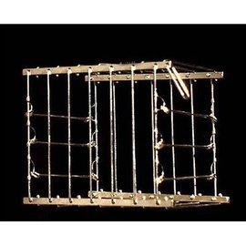 Vanishing Bird Cage - India