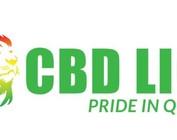 Lion Brands LLC