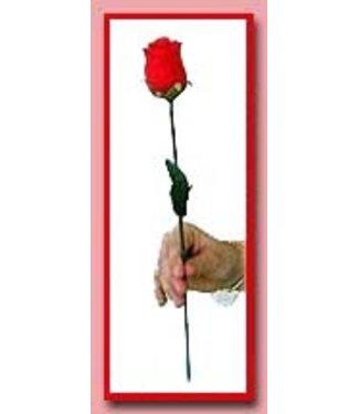 Appearing Rose by Daytona Magic M11