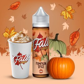 Pumpkin Spice 0mg 60ml by Fall E-Liquids