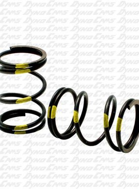 DynoCams 10.8 Engine Builder Spring Sold Each