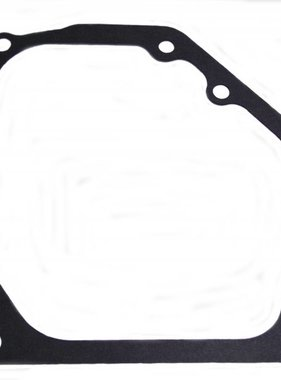 DynoCams OLD STYLE GASKET, SIDECOVER