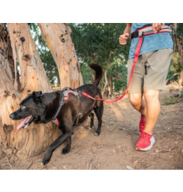 Nathan Sports Nathan K9 Runner's Waistbelt + Leash