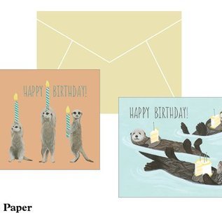 Chronicle Books Birthday Box: Twenty Birthday Cards