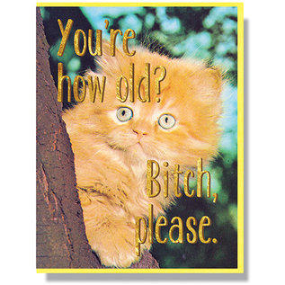 Smitten Kitten Birthday Card -  You're How Old?