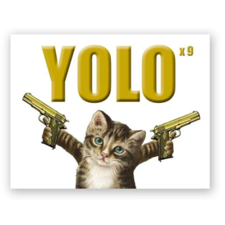 Mincing Mockingbird Greeting Card - YOLO Kitty