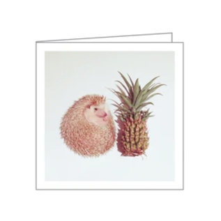 TeNeues Darcy the Hedgehog Boxed Notes