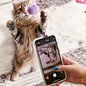 Kikkerland Design Inc Kitty Phone Clip