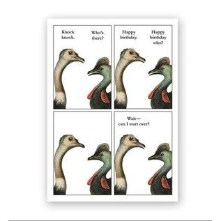Mincing Mockingbird Birthday - Knock Knock