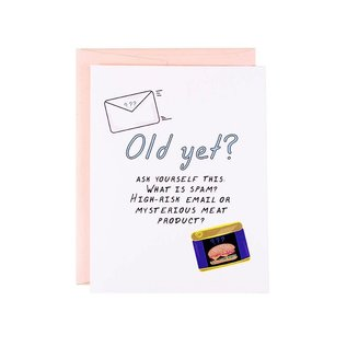 The Witty Gritty Paper Co. Birthday Card - What Is Spam