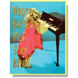 Smitten Kitten Birthday Card - Sexy Bitch