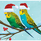Allport Editions Budgie Buddies Holiday Boxed  Notes