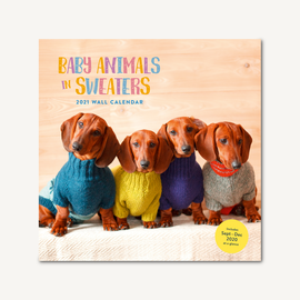 Chronicle Books Baby Animals in Sweaters 2021 Wall Calendar