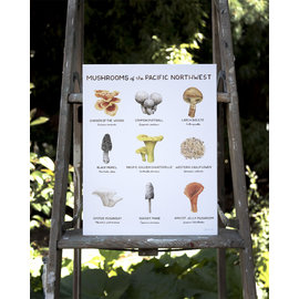 Yardia Mushrooms of the Pacific Northwest Art Print