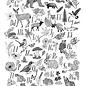 Frida Clements Hiking Through the Alphabet Print