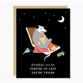Party of One Birthday Card - Possum