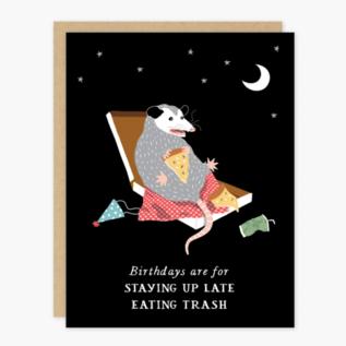 Party of One Birthday Card - Possum