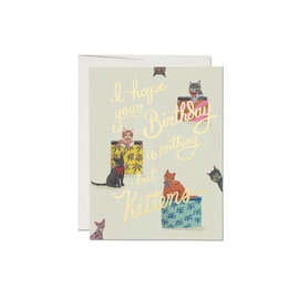 Red Cap Cards Birthday Card - Nothing But Kittens