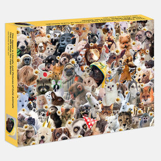 Penguin Group Literally Just Animals in Hats Puzzle