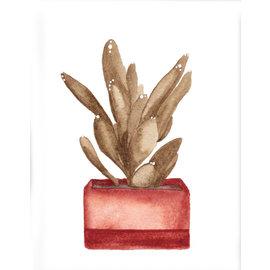 Jennifer Dean Art Plant Study 06 Print