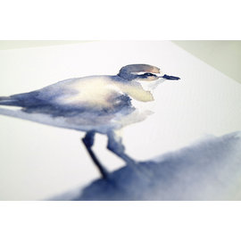 Jennifer Dean Art Piping Plover Print