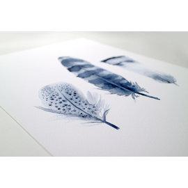 Jennifer Dean Art Blue Feather Trio Print