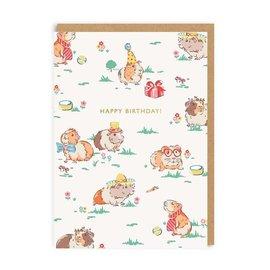 Ohh Deer Birthday Cards - Guinea Pigs