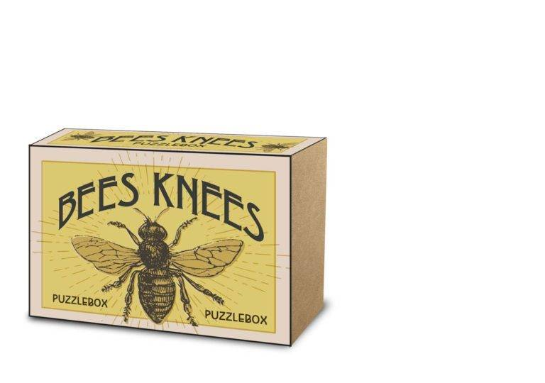 PROJECT GENIUS: BEES KNEES PUZZLE BOX