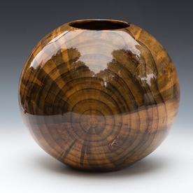 Philip Moulthrop Philip Moulthrop, Loblolly Pine, 9 x 10