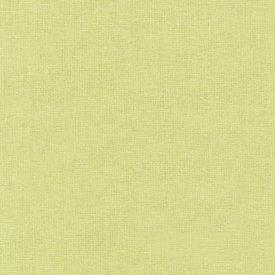 RK Kona / 1706 CELERY