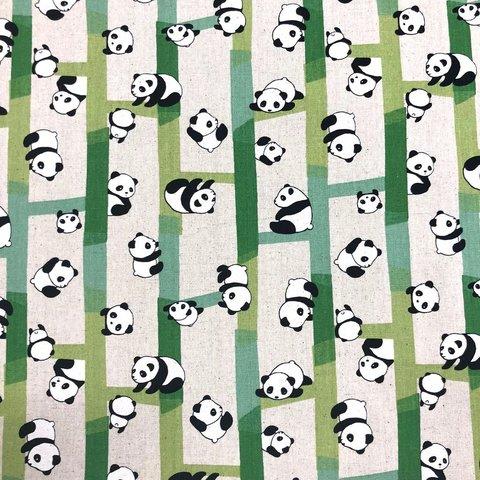 JB03 - Panda Bear / Green