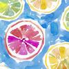 QT - Wild & Fruity / 27041 -B / Blue