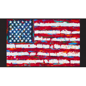 RK - Patriots / AWUD-18411-202 / 24x44 inch Panel
