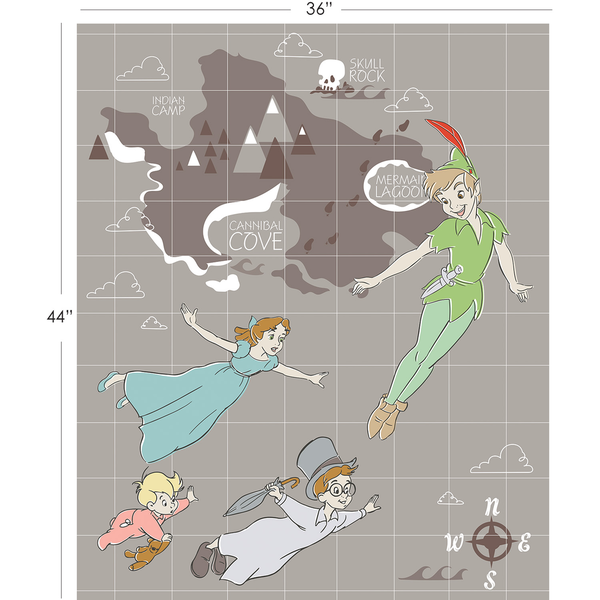 Camelot / Peter Pan 85330101P #1 / 36x44 inch Panel