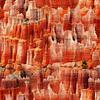 HF - Natures Narratives - R4678-646-Canyon