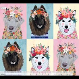 Mia Charro -  Floral Big Dogs / 129.101.07.1