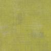 Grunge - (H) Kelp / 95