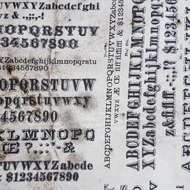 Tim Holtz - Dapper Typography / PWTH057.8NEUT